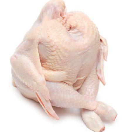 chicken1-420x450